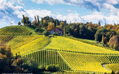 Saisoneröffnungsfahrt Steiermark