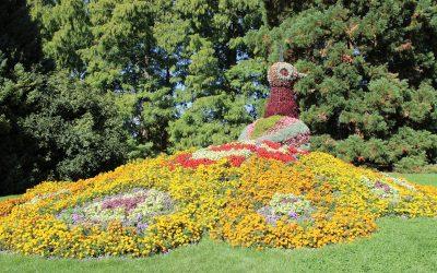 Blumeninsel Mainau